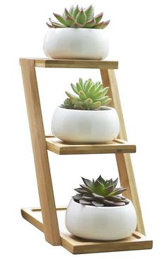 Tiered Bamboo Planter Stand with Ceramic Pots Succulent Planter with Stand 3 Tier Ceramic Pots Garden Herbs Indoor Succulent Planter, Bamboo Planter, Cactus Plant Pots, Succulent Pots, Planting Succulents, Planter Pots, Garden Planters, Succulent Display, Propagating Succulents