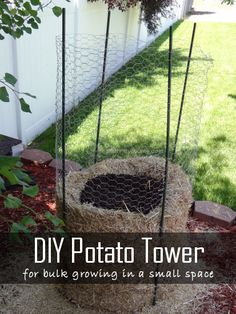 Potato Tower ideas for growing potatoes vertically. Vertical gardening saves space and is practical. 3 Ideas with tutorials for potatoes in tires, potatoes in box and potatoes with chicken wire tower.