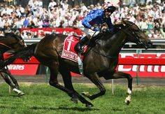 MAKYBE DIVA (GB) B f 1999, Desert King (Ire) - Tugela (USA). 36 starts, 15 wins, 7 placings. British-bred, Australian owned and raced champion racemare. Multi-award winning 3-time winner of the VRC Melbourne Cup, the only horse to ever do so. Inducted to the Australian Racing Hall of Fame in 2006. Inbred 4 x 4 x 4 to Northern Dancer. Retired after her 2005 Cup win, she has had four foals to date...Rockstardom, La Dolce Diva and three more colts, missing in 2010.