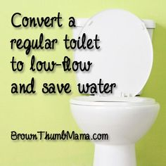 You can convert a regular toilet to a water-saver, low-flow toilet for just a few bucks (and no bricks or bottles full of rocks that may jam your pipes).