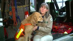 Search and rescue dogs from around the US searching for Oso landslide victims