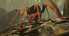 Ant Simulator Cancelled Amidst Accusations And Conflicting Reports (Real Life Ants Still Fascinating) New Games For Ps4, Xbox One Games, Ps4 Games, News Games, Video Games, Gamer News, Xbox News, New Ps4, Real Life