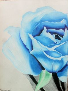Blue Flower in Colored Pencil by LegacyPaint on Etsy, $25.00