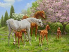 Cute painting of Arabian horses and their foals encountering a fawn, by Mary Haggard