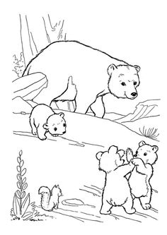 Printable Bear Coloring Pages . 24 Printable Bear Coloring Pages . Free Printable Bear Coloring Pages for Kids Polar Bear Coloring Page, Bear Coloring Pages, Coloring Pages To Print, Free Printable Coloring Pages, Adult Coloring Pages, Coloring Pages For Kids, Coloring Books, Coloring Sheets, Dinosaur Coloring Pages