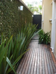 jardim lateral muro - Pesquisa Google