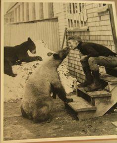 Waiting for March and Bear Management | hikingthewonderlandtrail  #hiking #Washington #bears #bearmanagement