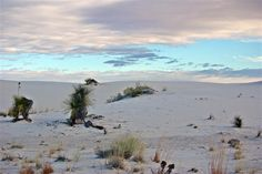 Another view of White Sands, 12/26/2014