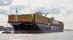 MSC Zoe. Photo: Mediterranean Shipping Company