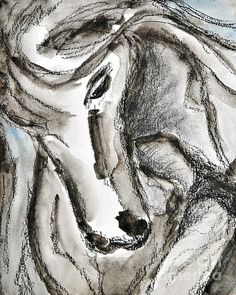 Angela Maher - Horse Art for Sale Framed Prints, Canvas Prints, Tapestry, Horses, Fine Art, Drawings, Artwork, Photography, Painting