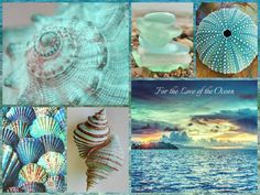 ❥ Ocean blues