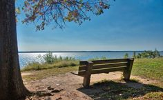 Bench by the Potomac.  Sunday was a bright and crisp fall day and we were at Leesylvania State Park for Bens senior pictures.  The shoot was by our our favorite local photographers @lowe.togs.  While Ben posed I roamed and snapped some pics.  Shot with my Sony RX100IV at Leesylvania State Park in Virginia.