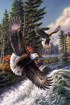 White Wolf James Meger Wildlife artist who paints with hidden images in his artwork is part of Eagle pictures - Pretty Birds, Beautiful Birds, Animals Beautiful, Photo Aigle, Vogel Gif, Graffiti Kunst, Eagle Drawing, Eagle Painting, Eagle Pictures