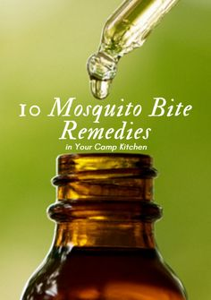 If you've ever had a bug bite, you know that it can be all-consuming. Get more than one and you're itchy all night long. The good news is that some of the most effective mosquito bite remedies may already be at your campsite. 10 Mosquito Bite Remedies in Your Camp Kitchen http://www.active.com/outdoors/articles/10-Mosquito-Bite-Remedies-in-Your-Camp-Kitchen.htm?cmp=23-243-1209