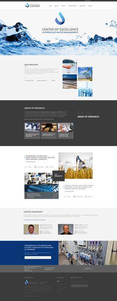 Center of Excellence   Marketing Asset   Landing page web design