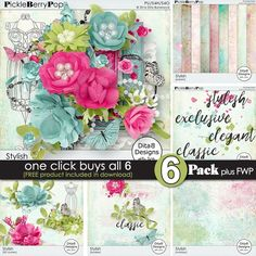Stylish ~ 6-Pack PLUS FWP by DitaB Designs