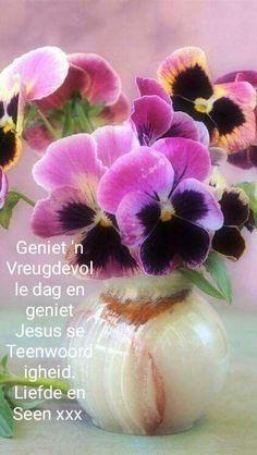 Pretty Flowers, Fresh Flowers, Lekker Dag, Afrikaanse Quotes, Goeie More, Good Morning Wishes, Plants, Verses, Bible