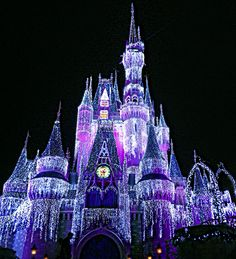 Cinderella's castle! (Disney World)