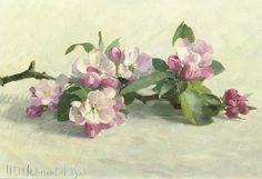 Henk Helmantel Apple Blossoms 1978