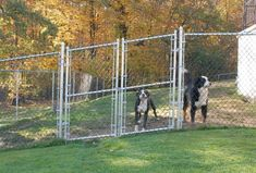 Great Images Cheap Fence Ideas For Dogs in DIY Reusable and Portable Dog Fence ,. Great Images Cheap Fence Ideas For Dogs in DIY Reusable and Portable Dog Fence ,… , G Portable Dog Fence, Portable Dog Kennels, Cheap Dog Kennels, Wooden Dog Kennels, Dog Backyard, Backyard Fences, Backyard Retreat, Backyard Ideas, Backyard Landscaping