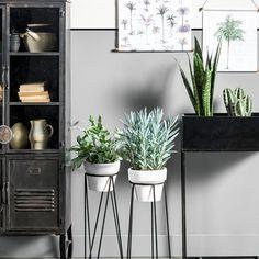 Botanische interieurs: een rustige basis en helemaal losgaan met potten en mooie planten. Grote planten, kleine cactussen en lekker veel printjes.