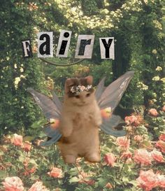 Funky Art, My Vibe, Faeries, Ethereal, Cute Cats, Pixie, Kittens, Religion, Cute Animals