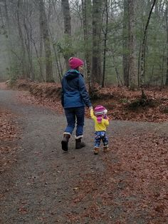 Family Friendly Hike near Asheville NC