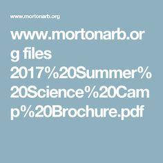 www.mortonarb.org files 2017%20Summer%20Science%20Camp%20Brochure.pdf