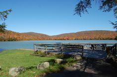 Platform at Mongaup Pond Campground - NYSDEC Campgrounds