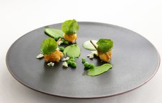 Restaurant ESqUISSE(レストラン エスキス) | MENU | WINE | PHOTO ARCHIVES GALLERY | フォト アーカイブ ギャラリー