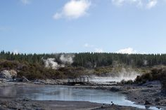 Relaxing things to do in Rotorua: check out the bubbling mud pools and geysers at Hell's Gate Relaxing Things To Do, Mud, Pools, Gate, Stuff To Do, Journey, River, Mountains, Check