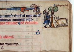 MS CCC 285 f.8 A swineherd grazing his pigs, illustration for November, from a calendar of a psalter, English, c.1250-75 (parchment)