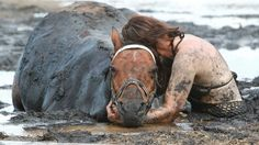 Faith in humanity restored.I would do this for my pets. Horse Rescue, Animal Rescue, Mastiff, Stuck In The Mud, Human Kindness, Touching Stories, Brave Women, Faith In Humanity Restored, Tier Fotos