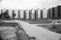 Palotaváros (Lenin lakótelep), központi park, háttérben a Tolnai utca házai.