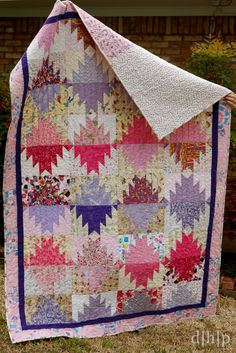 Scrappy Mountain Majesties - FREE Pattern by Bonnie Hunter at http://quiltville.blogspot.com/2005/06/scrappy-mountain-majesties.html
