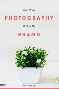 Personally for me, photography has been a super catalyst for the growth of my blog & business. I've seen the results first hand! This was one of the main reasons I started #CreativeConvex and I am s