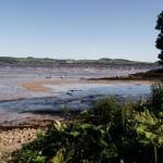 Low tide by Pam Woods (@Galloway Wee Wildlife Wanders) on Twitter
