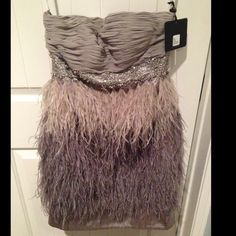 Platinum Sue Wong ostrich feather dress strapless Platinum Sue Wong ostrich feather dress strapless size 4, feathers and beads in tact, never worn new with tags, was originally intended for bridesmaid dress ended up using the light pink dress instead. Sue Wong Dresses