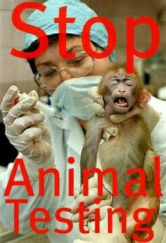Why are animals being used for testing when there are EVIL HUMAN BEINGS  in Prison