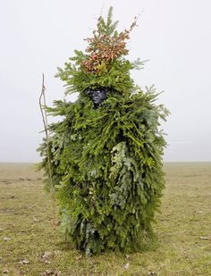 """Wilder Mann,"" is a series by photographer Charles Freger, he traveled through 19 European nations to gather pictures of impressive costumes from pagan rituals that have survived to this day. Charles Freger, Tree Costume, Arte Tribal, Art Premier, Creative Costumes, Weird Costumes, Amazing Costumes, Costume Ideas, Halloween Costumes"