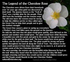 Cherokee Tears
