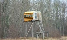 A Unique Deer Hunting Stand