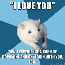 haha I love this psychology major rat. too funny! Psychology Jokes, Psychology Major, Psychology Student, Forensic Psychology, Abnormal Psychology, Freudian Psychology, Family Psychology, Evolutionary Psychology, Psych Major