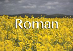 """Meaning: Unsuprisingly, it means """"citizen of Rome"""". Informal version: Roma It's pronounced with a short """"ro"""" sound, so """"Roh-mahn"""", not """"Row-man"""". It's the name of many successful people, and also means """"novel"""" both in Russian and in French."""