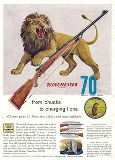 Winchester Model 70 African Rifle 1957 Winchester Firearms, Winchester Model 70, Vintage Advertisements, Vintage Ads, Vintage Posters, Hunting Art, Hunting Rifles, Vintage Tin Signs, Camping Photography