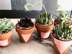 We used terracotta pots nd painted simple geometric shapes on each and added a succulent for a simple Spring table setting.