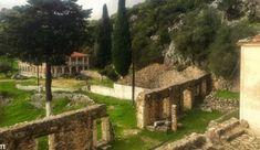 Γιορτάζει το αρχαιότερο μονατήρι της Γεννεσίου Θεοτόκου Άτρου Κεφαλληνίας Plants, Plant, Planets