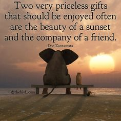 Two very priceless gifts that should be enjoyed often are the beauty of a sunset and the company of a friend ~ Doe Zantamata Inspiring Quotes About Life, Inspirational Quotes, Motivational Quotes, Elephant Quotes, The Notebook, Attitude, Sunset Quotes, Positive Words, Positive Living