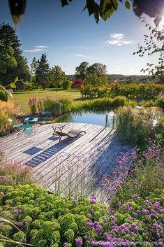 Natural Swimming Ponds, Natural Pond, Pond Landscaping, Ponds Backyard, Garden Ponds, Pond Design, Landscape Design, Water Features In The Garden, Dream Garden