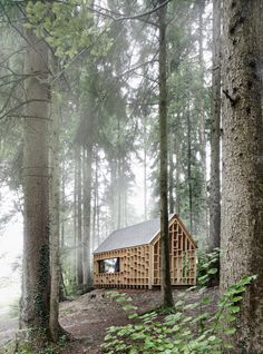 Nothing beats a little cabin in the woods. Except maybe if it has been designed by a talented Austrian architect, and is photographed in perfect fog.  Cabin in the Woods by Adolf Bereuter | Tiny Homes
